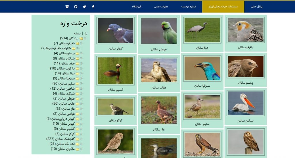 "<a class=""amazingslider-posttitle-link"" href=""http://mozooshenasi.ir/بایگانی/5284"" target=""_blank"">راه اندازی وب سایت پرندگان ایران موسسه موضوع شناسی احکام فقهی</a>"